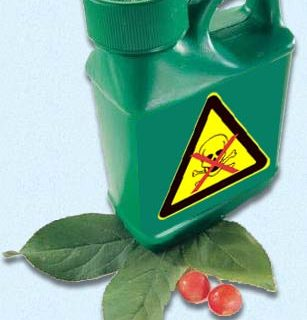 Green but Toxic | Are Your Green Cleaning Products Toxic or Safe