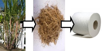 Reduce, Reuse, Reinvent Green Janitorial Supplies | Sugar Cane Paper Products