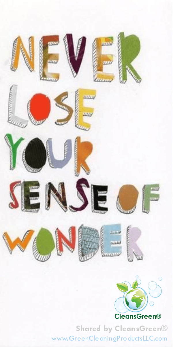 Never Lose Your Sense of Wonder ... Quote