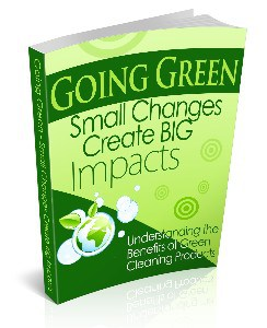 Going Green Small Changes Create BIg Impacts from Green Cleaning Products