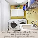 Green Sustainability for a Healthy Home | Green Stain Removers
