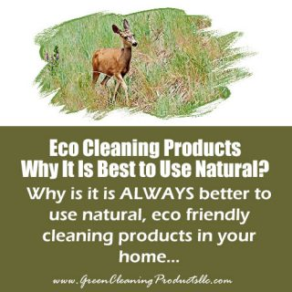 Eco Cleaning Products – Why It Is Best to Use Natural