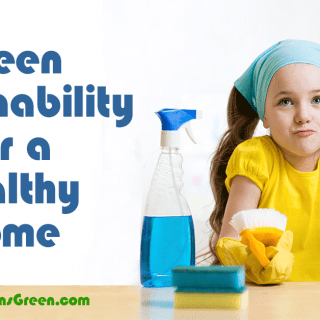 Green Sustainability for a Healthy Home