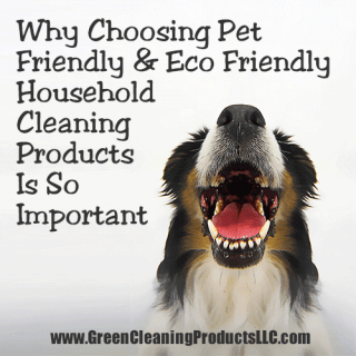 Why Choosing Pet Friendly and Eco Friendly Household Cleaning Products Is So Important
