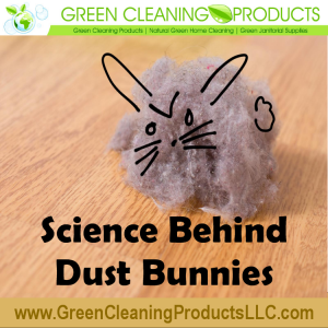 Science Behind Dust Bunnies