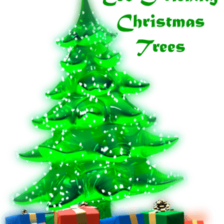 Eco Friendly Christmas Tree | Shared by Green Cleaning Products