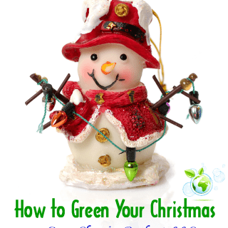 Cleans Green Shares How to Green Christmas