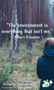 Quote - Albert Einstein 1
