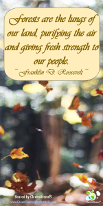 Quote - Frankline D. Roosevelt