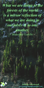 Quote - Mahatma Gandhi from Green Cleaning Prodcuts