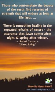 Quote - Rachel Carson