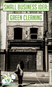 Small Business Idea Green Cleaning