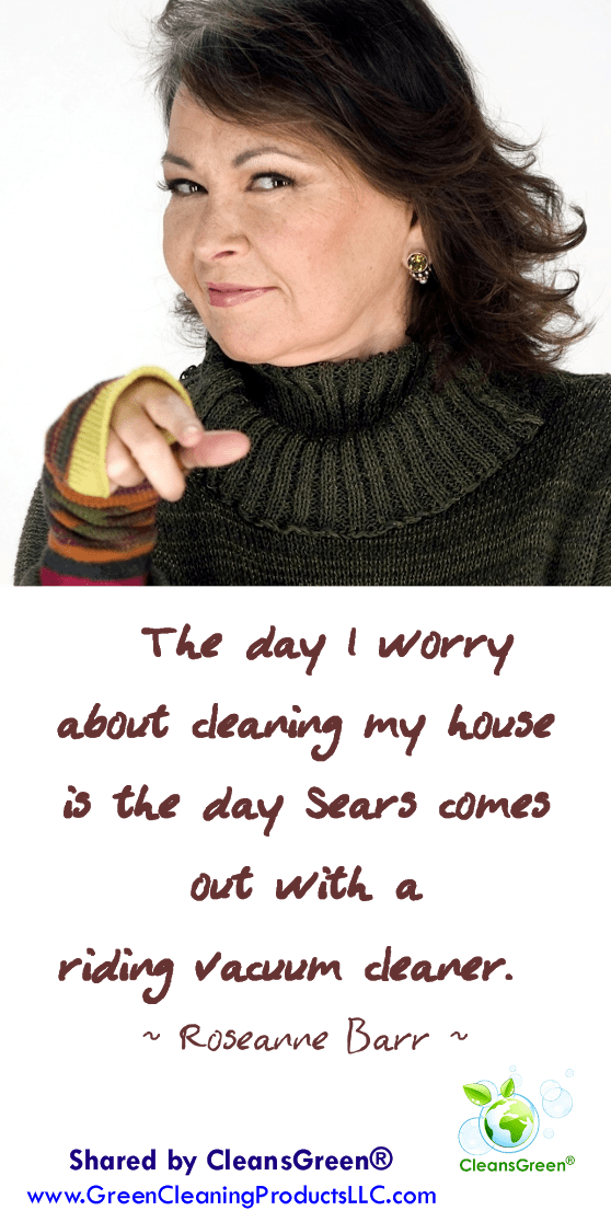 The day I worry about cleaning my house is the day Sears comes out with a riding vacuum cleaner. Roseanne Barr Quotes