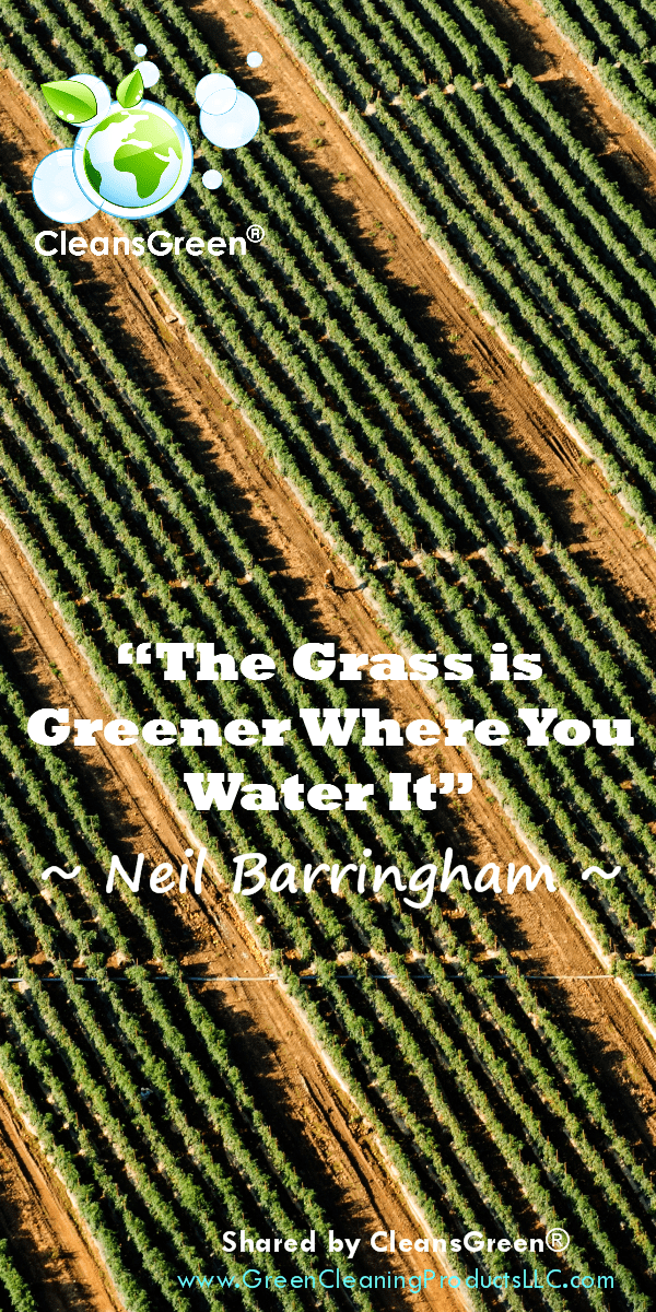 """The Grass is Greener Where You Water It,"" as stated so eloquently 