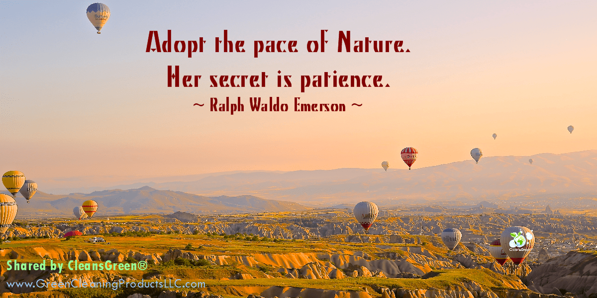 Adopt the pace of Nature. Her secret is patience. Ralph Waldo Emerson Quote