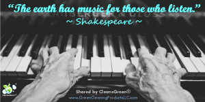 Quote - Shakespeare wide