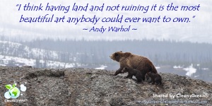 "I think having land and not ruining it is the most beautiful art anybody could ever want to own."" - Warhol Quote"