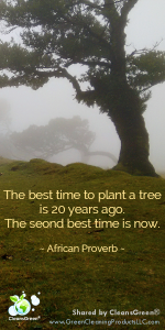 African Proverb: The best time to plant a tree is 20 years ago. The second best time is now