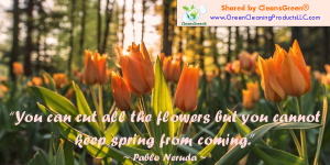 Pablo Neuda: You can cut all the flowers, but you cannot keep spring from coming
