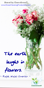 Ralph Waldo Emerson: The world laughs in flowers #quote