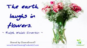 Ralph Waldo Emerson: The world laughs in flowers