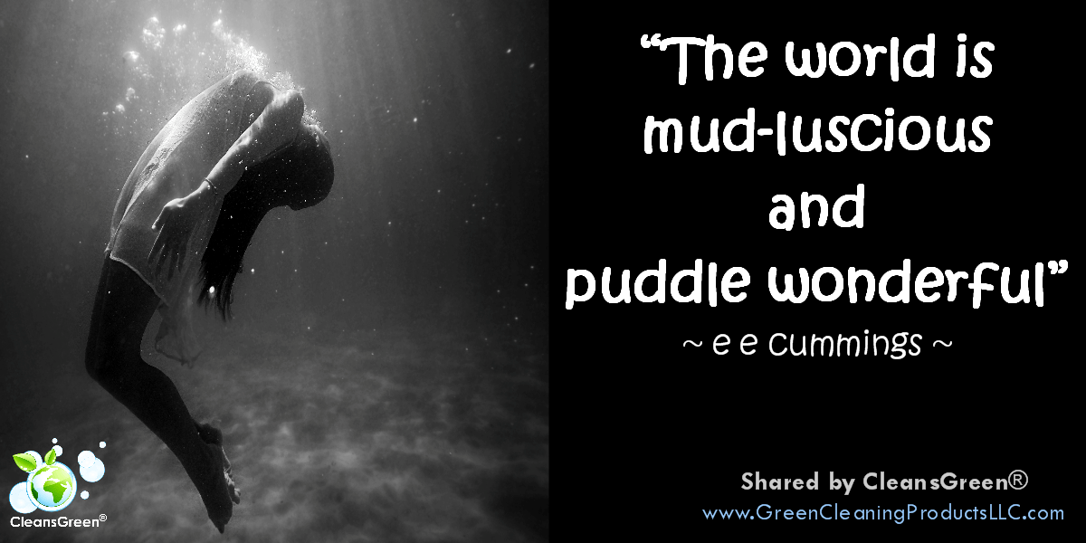 ee cummings: The world is mud-licious and puddle wonderful #quotes