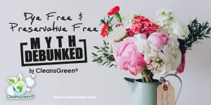 Dye Free and Preservative Free Myth Debunked by CleansGreen