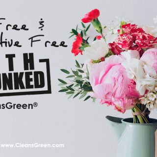 Dye Free and Preservative Free | Myth Debunked by CleansGreen®