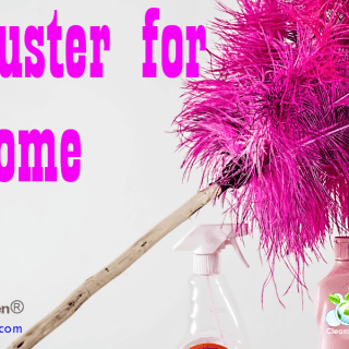 Best Duster For Home | Quick Review by CleansGreen®