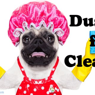 Dusters for Cleaning | Options Summarized by CleansGreen®