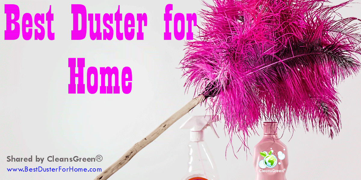 Best Duster For Home Quick Review By