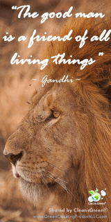 The Good Man Is A Friend of All Living Things - Gandhi Quotes