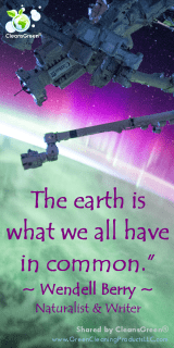 The Earth is what we all have in common. - Wendell Berry Quotes