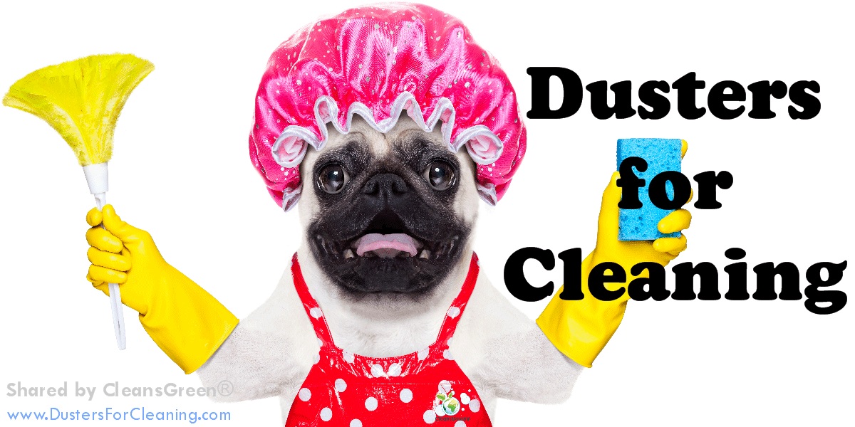 "Best Dusters for Cleaning | Options Summarized by CleansGreen® ... There is a wide selection of cleaning tools called ""dusters"" that are available for the discerning cleaner.  Depending on the customized application will help to determine which duster is right for them."