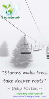 Storms Make Trees Have Deeper Roots - Dolly Parton Quotes