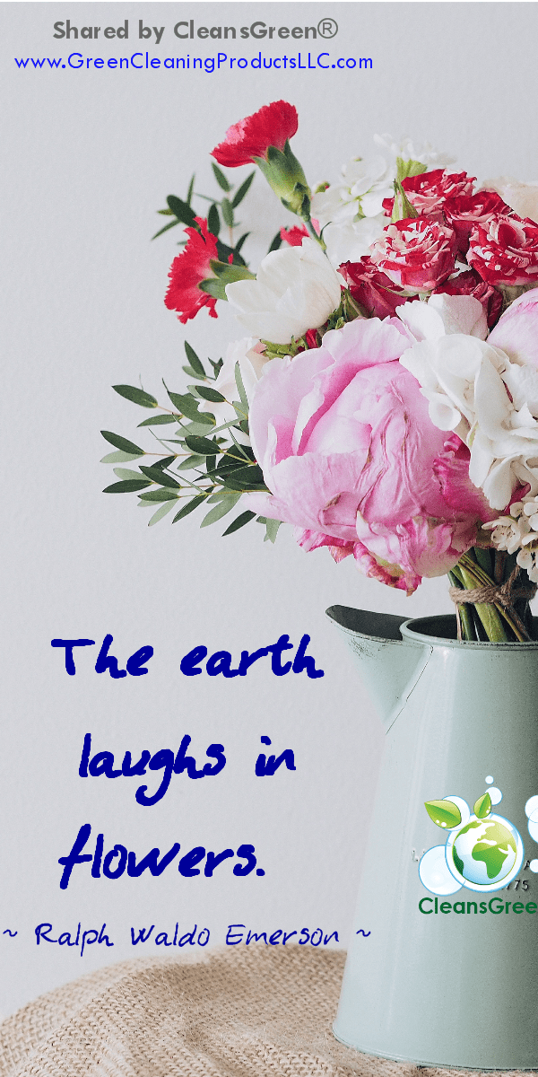 Ralph Waldo Emerson Quotes... The earth laughs in flowers #quotes